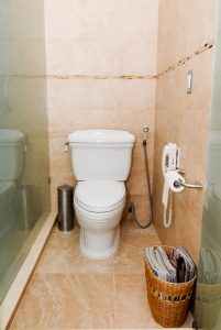toilet-with-sprayer-and-phone